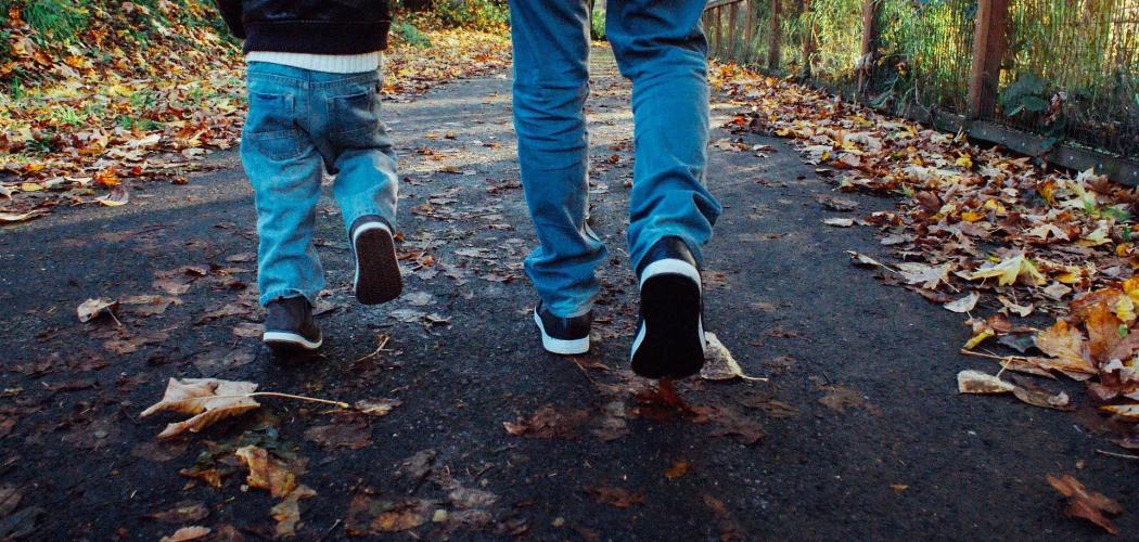 6.Náhradnictví – umožňuje zůstaviteli ustanovit dědici náhradníka, kdyby jím určený dědic náhodou nedědil